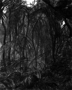 Dschungel-826x1024