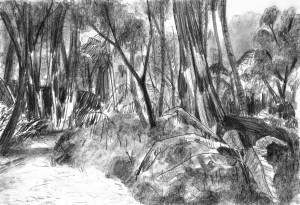 Far-Cry-Rook-Islands-Jungle-2-Bleistift-auf-Papier-105-x-148-cm-2013