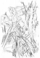 Gondwanaland-Tropische-Pflanzen-Bleistift-auf-Papier-148-x-105-cm-2012