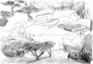 Planten-Blomen-Japanischer-Landschaftsgarten-1-Bleistift-auf-Papier-105-x-148-cm-2012
