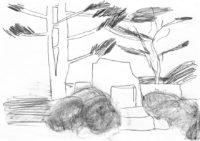 Planten-Blomen-Japanischer-Landschaftsgarten-3-Bleistift-auf-Papier-105-x-148-cm-2012