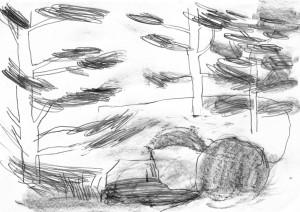 Planten-Blomen-Japanischer-Landschaftsgarten-4-Bleistift-auf-Papier-105-x-148-cm-2012