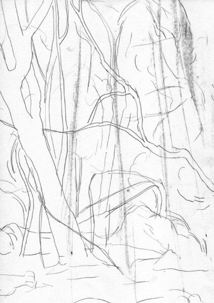 oT (Helle Bäume), Bleistift auf Papier, 27,5 x 19,5 cm, 2014