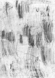 oT (Schonung2), Bleistift auf Papier, 27,5 x 19,5 cm, 2014