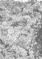 Garten_Kohle-auf-Papier_140x199_2016