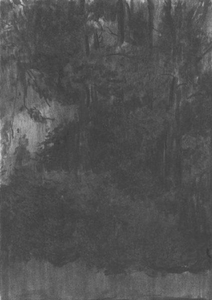 Grove_Kohle-auf-Papier_140x199_2016
