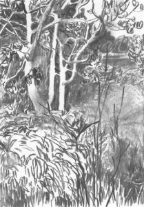 The-Japanese-Garden-Island_III_Kohle-auf-Papier_140x199_2016