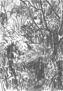 The-Japanese-Garden-Island_IV_Kohle-auf-Papier_140x199_2016