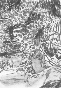 The-Japanese-Garden-Island_I_Kohle-auf-Papier_140x199_2016